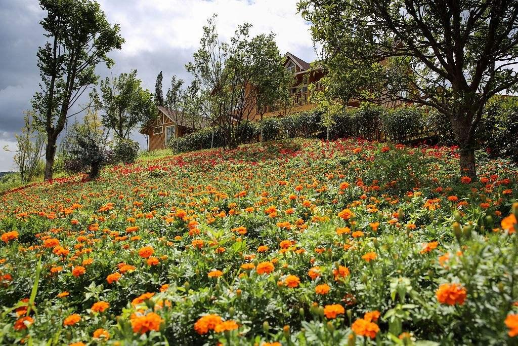 休闲农业园区规划八要素