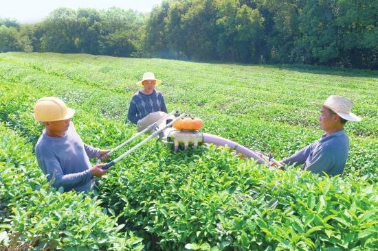 投资近亿元石首六虎山生态园打造农业产业化园区