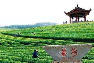 江西凤凰沟金龙文化旅游生态园